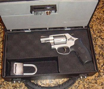 Gun-Transporter-complete