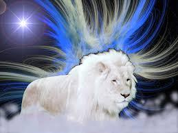 lionfree