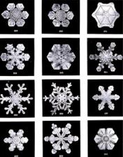 Emergent Snowflakes
