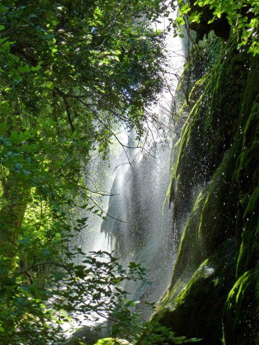 Gorman Falls 2