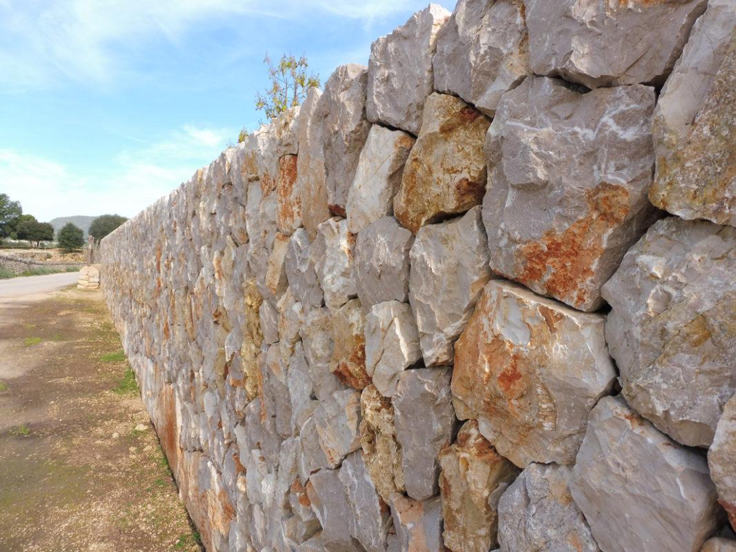 Salvar I Recuperar Aquella Mallorca Bucòlica I Aspra, I No Morir En L'intent