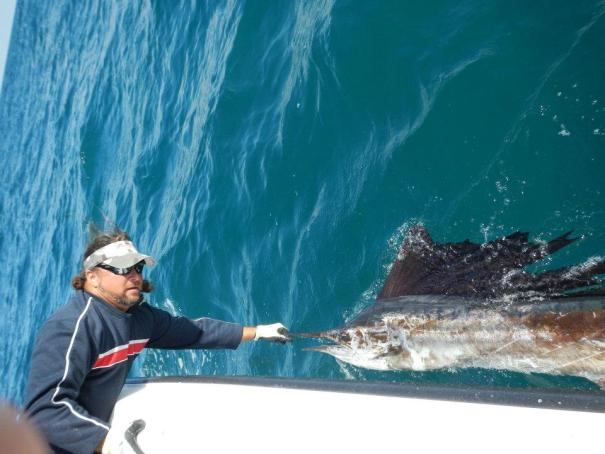 Captain Scott Lum handling a sailfish