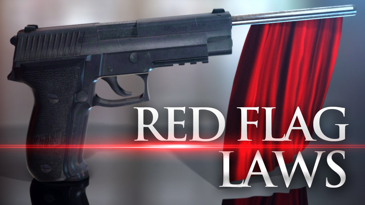 RED FLAG LAW_1531944398891.jpg.jpg