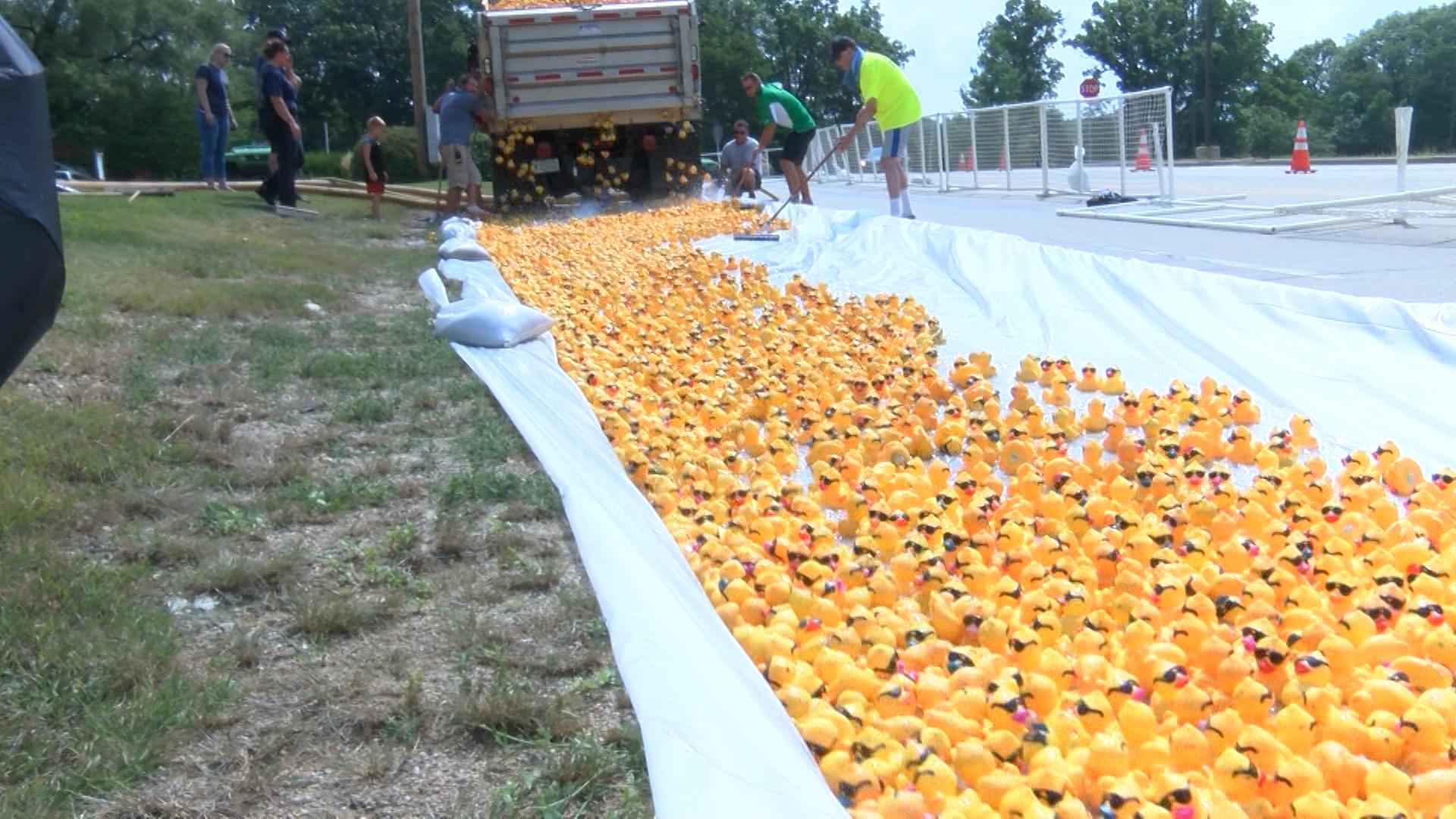 Duck Race_1535236988139.jpg.jpg