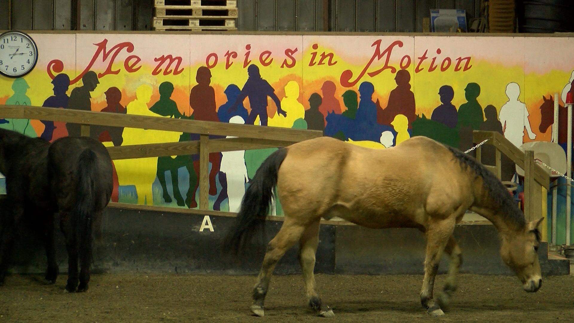 Horses_1554495534125.jpg