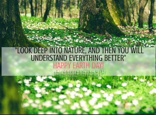70 Quotes About Our Beautiful Earth