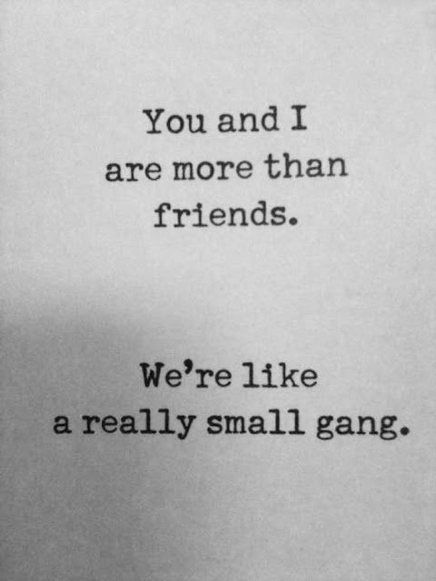 46+ Friendship Quotes To Share With Your Best Friend