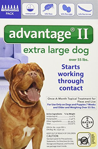 Bayer Advantage II flea drops review