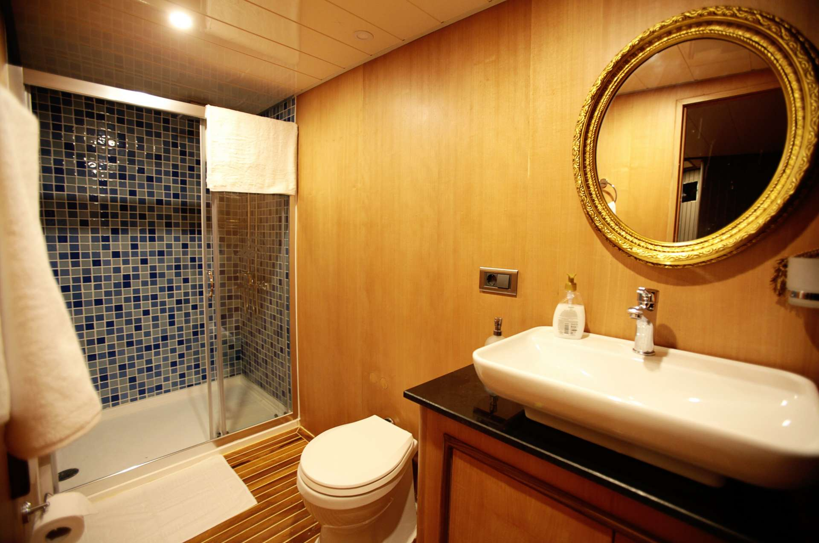 CROCUS yacht image # 17