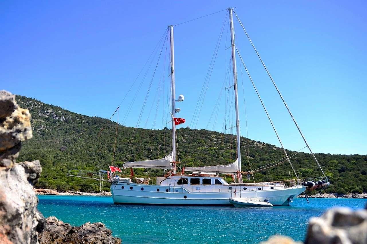 Image of MIA 1 yacht #17