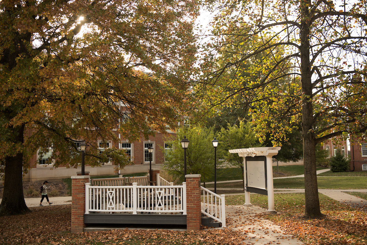 the Buchanan Outdoor Classroom on an autumn day