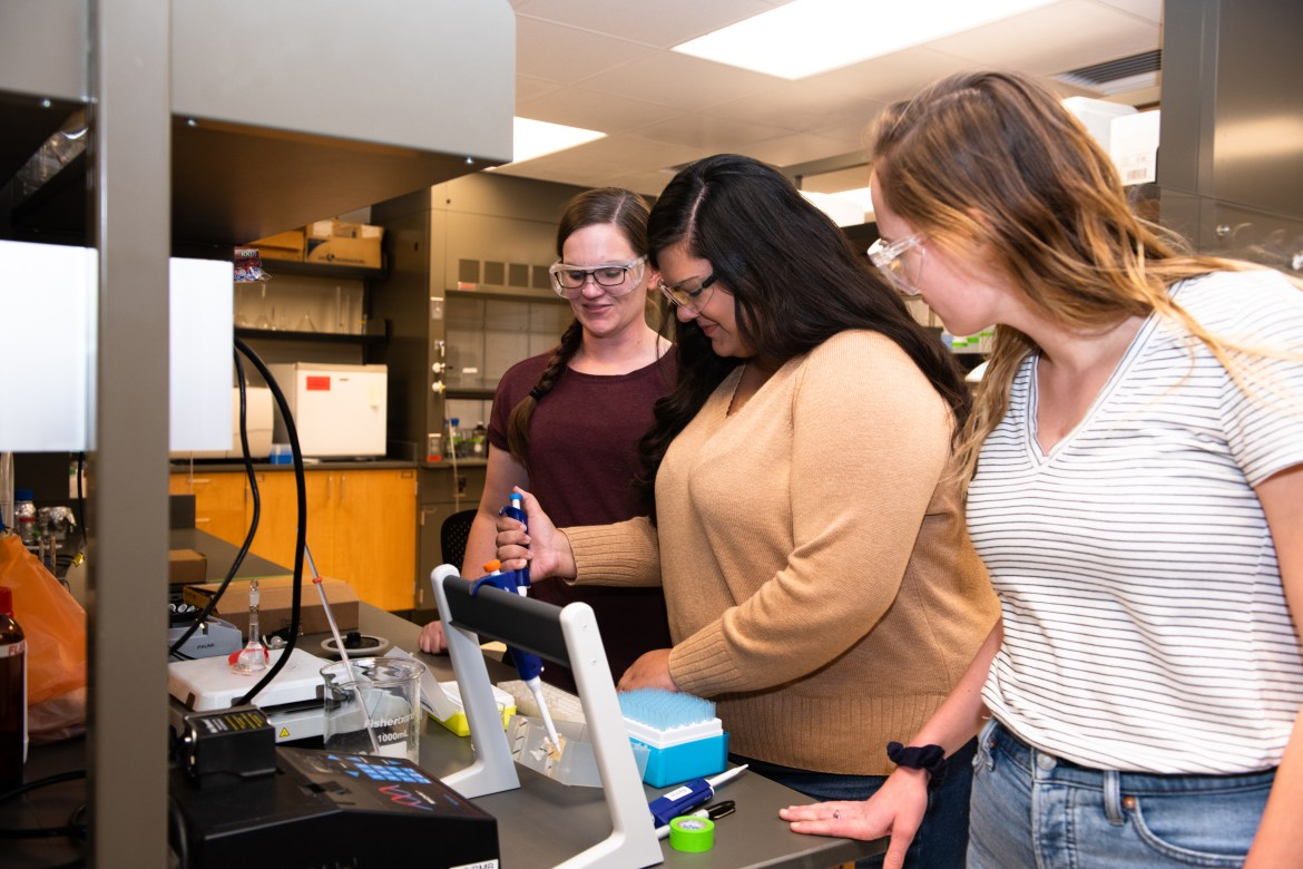 Professor Erin Wachter and students engaged in research.