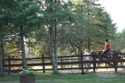 lecon-equitation
