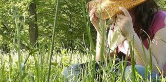 Allergies au polen, animaux, poussières, nourritures - Centre Info Santé