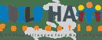 Build Haiti Foundation Corp