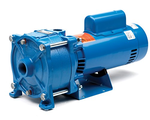 1 Phase 1 Stage GOULDS WATER TECHNOLOGY 10HM01N11M6BQQV Threaded Horizontal Multistage Centrifugal Electric Pump 1.5 hp 60 HZ SilCar-SilCar-Viton Seal 115V
