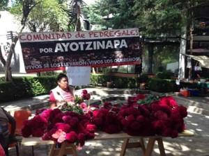 Flores de Ayotzinapa en Santo Domingo 1
