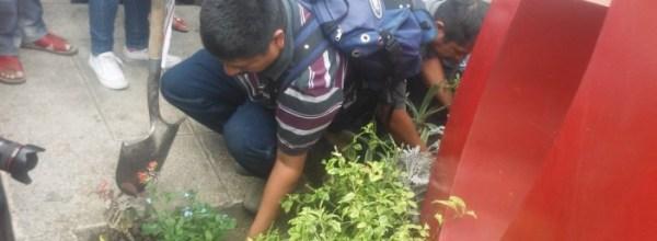 """Ayotzinapa: Sembrando """"no me olvides"""""""