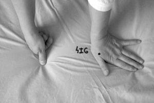 Sistema de regulación del Otoño: 4IG/3H