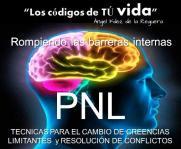 dib. PNL