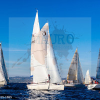 regataBardolino2015-1065