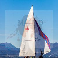 regataBardolino2015-1175