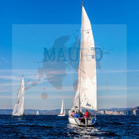 regataBardolino2015-1185