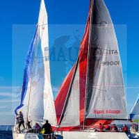 regataBardolino2015-1225