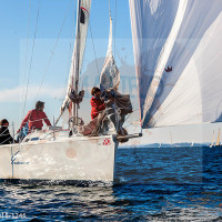regataBardolino2015-1246