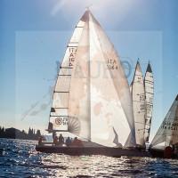 regataBardolino2015-1271
