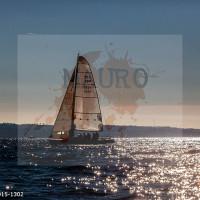 regataBardolino2015-1302