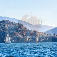 regataBardolino2015-1387