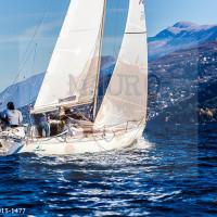 regataBardolino2015-1477