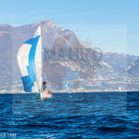 regataBardolino2015-1666