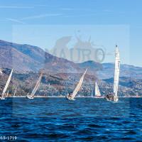 regataBardolino2015-1719