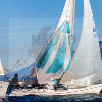 regataBardolino2015-1740