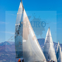 regataBardolino2015-1775