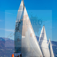 regataBardolino2015-1778