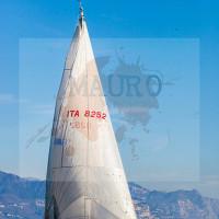 regataBardolino2015-1892