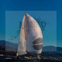 regataBardolino2015-2351