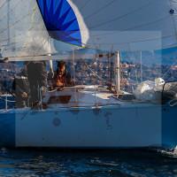 regataBardolino2015-2355