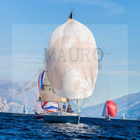 regataBardolino2015-2385