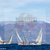 regataBardolino2015-2623