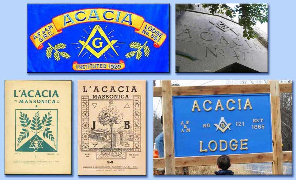 logge acacia