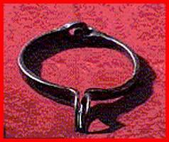 Il collare di Sarsina
