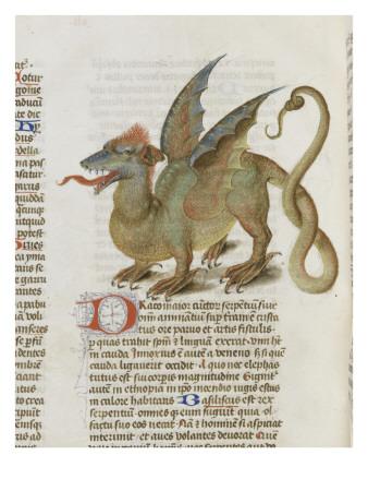 I bestiari medievali come testimonianza di un altro modo di accostarsi alla natura