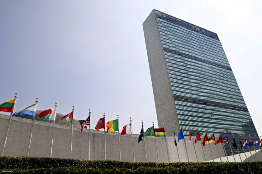 C-Fam – bilancio di un anno di lavoro dell'ONU e all'ONU