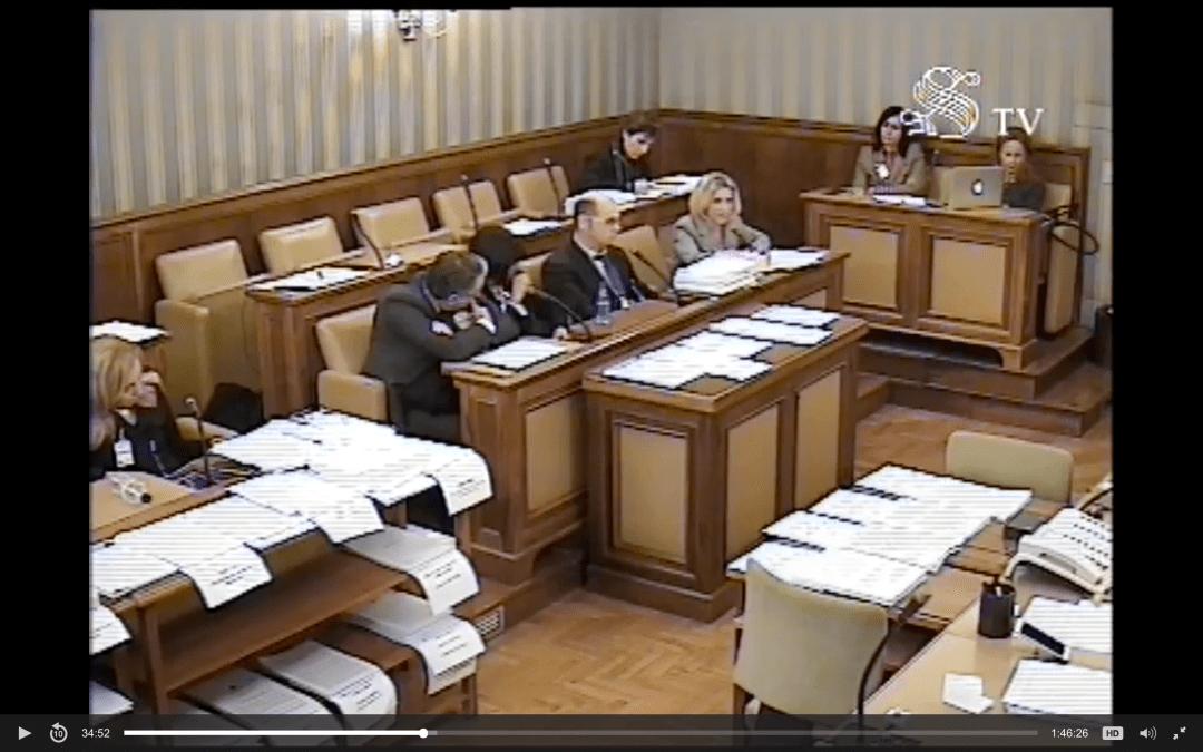 Affido condiviso: audizione in commissione giustizia del Senato