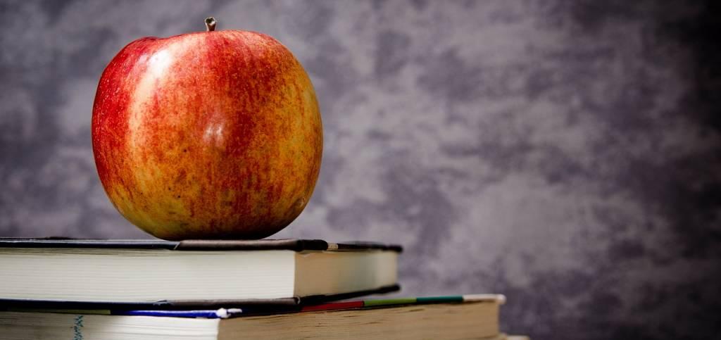 P.d.l. Zan sull'omofobia: pericoloso per l'educazione e per l'insegnamento