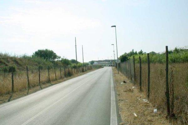 Idroscalo di Ostia. La via. Foto di Jordi Corominas i Julian